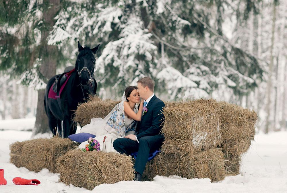 Зимняя фотосессия с животными